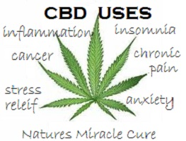 Can CBD Oil Help Treat Medical Conditions