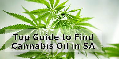 Top Guide to Finding Cannabis Oil in South Africa
