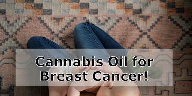 Cannabis Oil Can Help Treat Breast Cancer